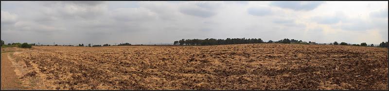 Фото: Панорама: Израильский чернозем
