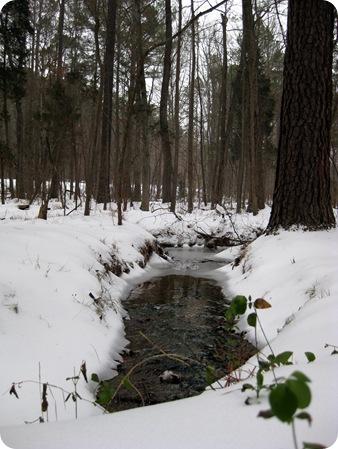 Snow Day 067