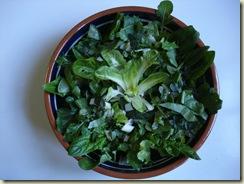 winter salad_1_1