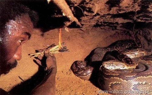 cacador-anacondas-4