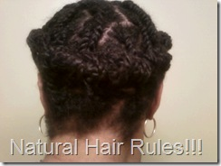 Two-Strand Twist Updo, back