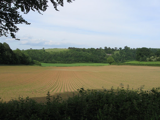 View across the fields from Dartinghall, Devon