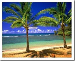 Tropical_Lagoon