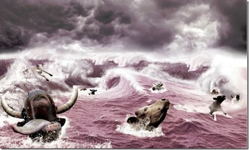 toros ahogándose