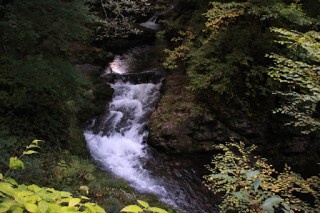 三河沢川の流れ