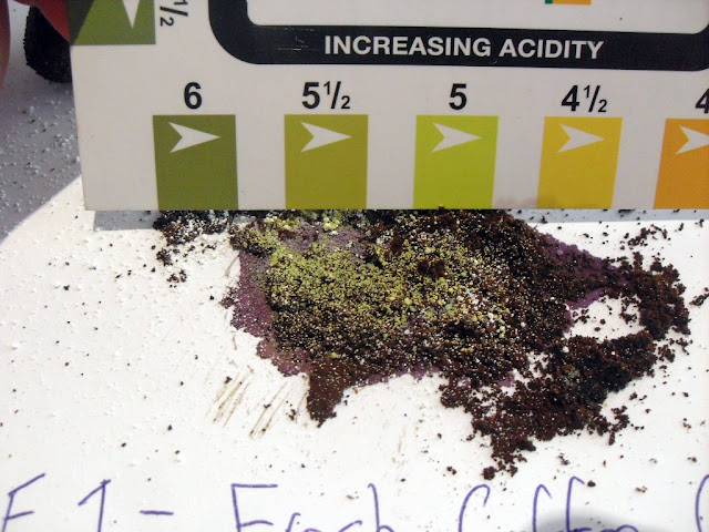 pH of Soil from Coffee Grounds (2/6)