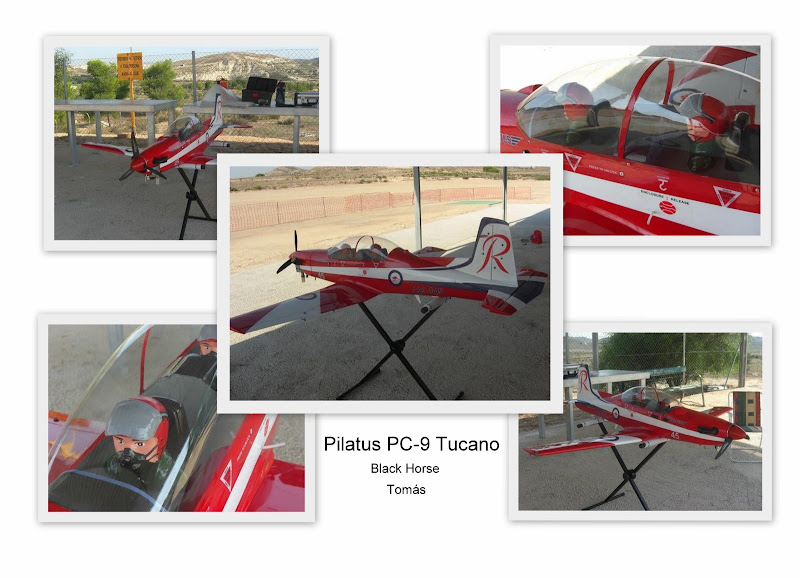 Pilatus PC-9 Tucano by Tomás