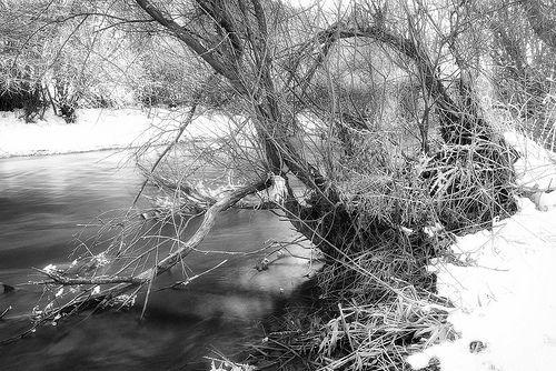 Invierno.- Fotografía de Alfredo García Álvarez