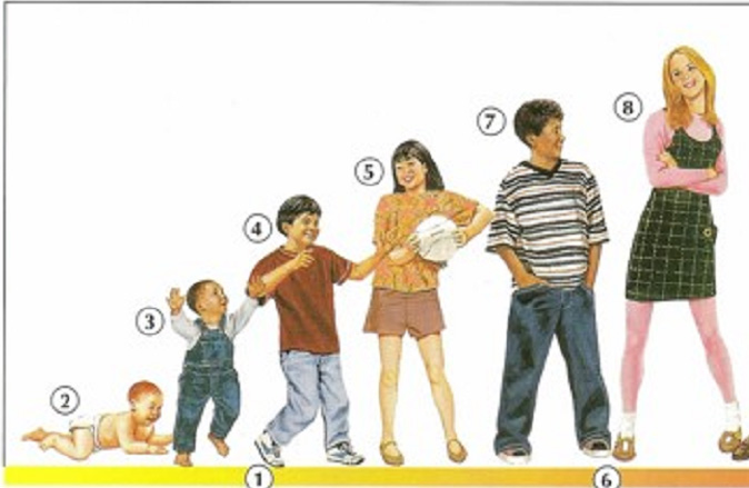 Age - Physical Description - Online Dictionary for Kids