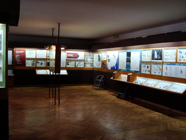 """Muzeum Przyrodnicze we Wrocławiu - sala """"Owady i człowiek"""""""