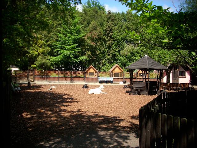 Małe Zoo - Zoo Oliwa
