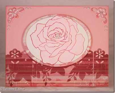 ssd sketch pink rose