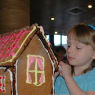 Tess House Construction