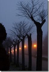 Niebla Cotos-10-01-16-23