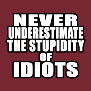 stupid_idiots_big.jpg