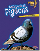 Pigeons cover