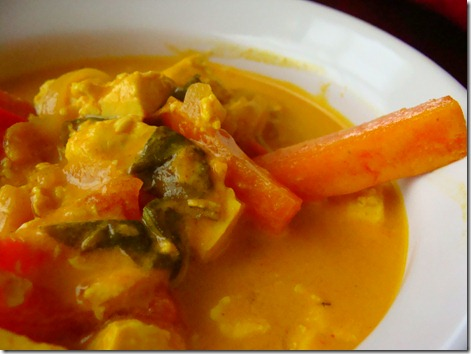 yellow curry (4)