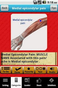 Muscle Trigger Points LITE screenshot 2