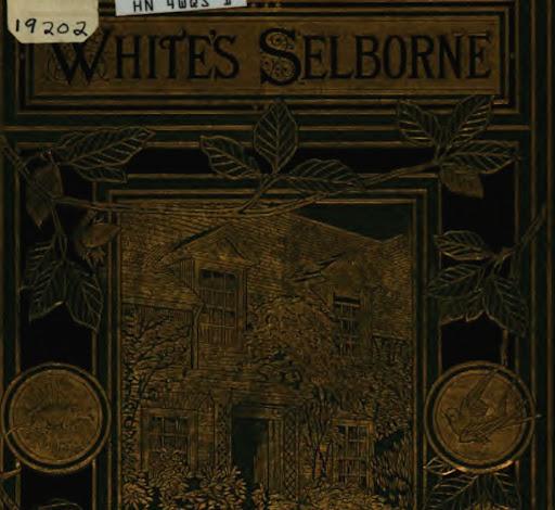 selbourne.jpg