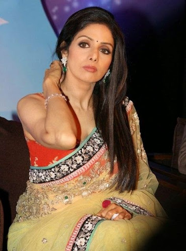Sexy images of sridevi-3234