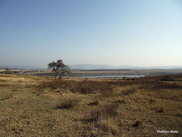 Tala Valley landscape