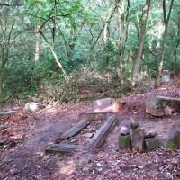 Prace na cmentarzu ewangelickim w Łęgu Witoszynie #2