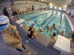 swim-n-swim-2015