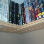 I'd ran out of bookshelf space in the Library (AKA the stupid room due to it's…