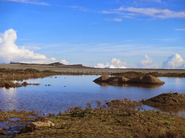 bale mountains