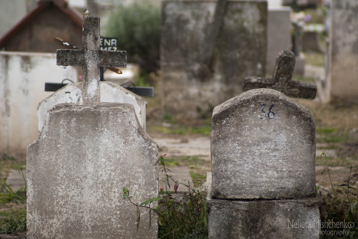 Cemetery,Alta Gracia,Tombs,Graves