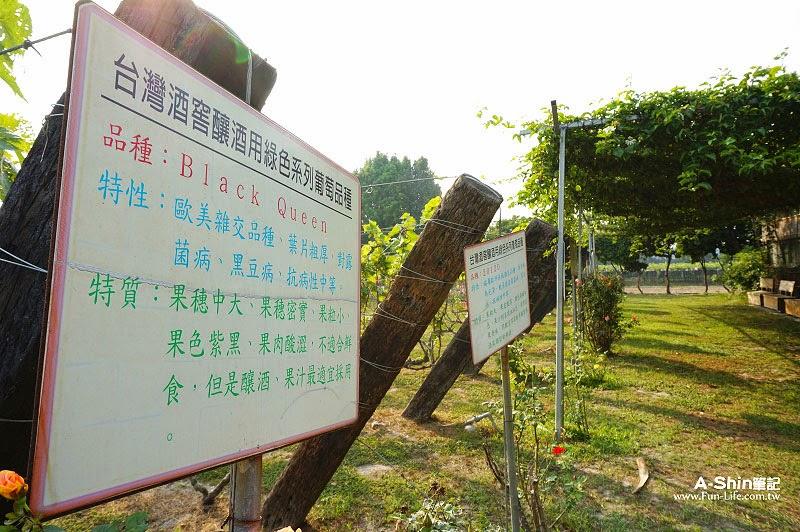 台灣酒窖4