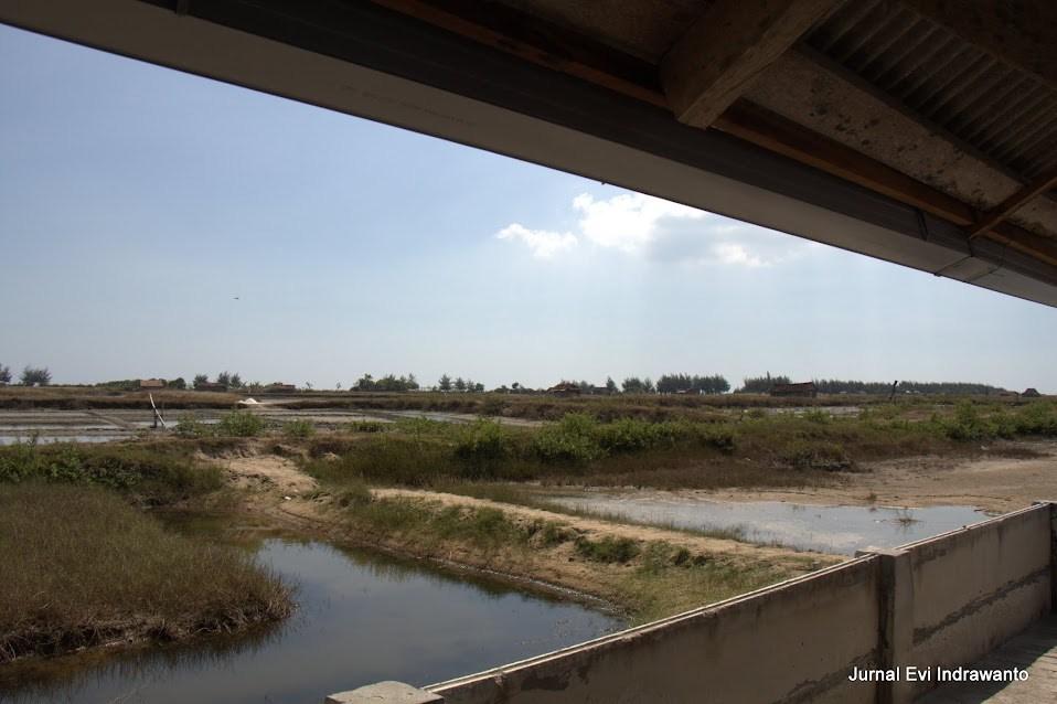 ladang garam di sekitar situs perahu kuno punjulharjo