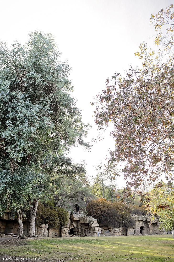 Old LA Zoo Hike: Hidden Gems in Los Angeles.