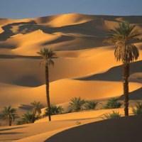 Semejanzas y diferencias entre Libia e Iraq: hablando claro
