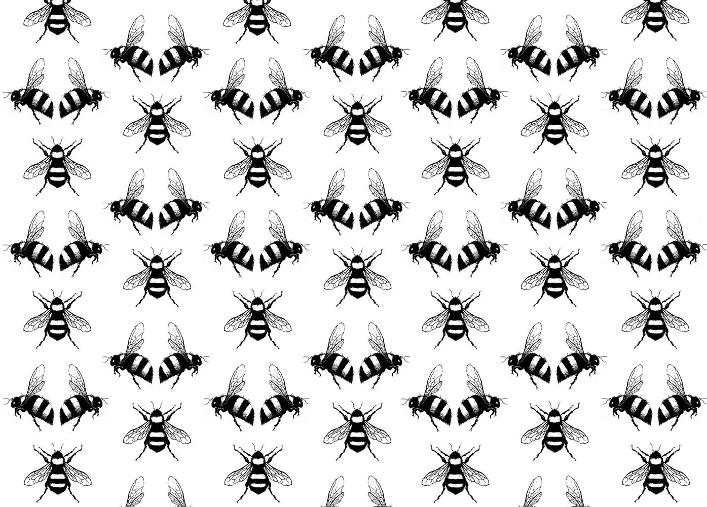 Bee Pattern Background By Debra Hughes Via Shutterstock