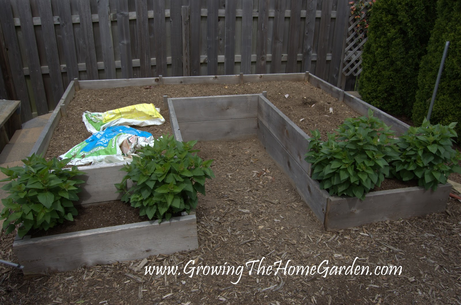 Plan A Raised Bed Garden Build Raised Garden Beds For Your