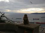 Visita a Gibraltar - 3º ESO