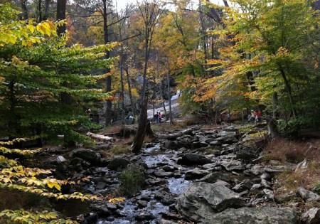 Hunting Creek at Cunningham Falls State Park