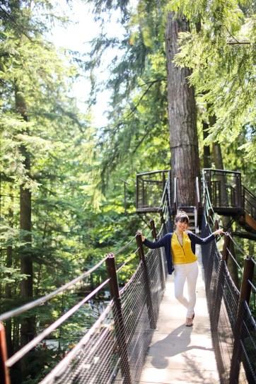 Treetops Adventures.