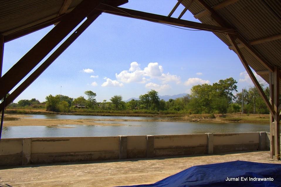 foto rawa di sekitar situs perahu kuno punjulharjo