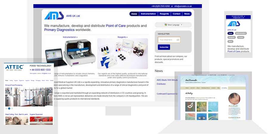 website design portfolio: website screenshots
