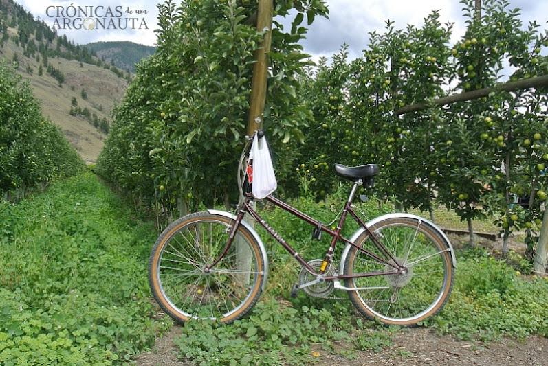bicicleta para trabajar en Canadá