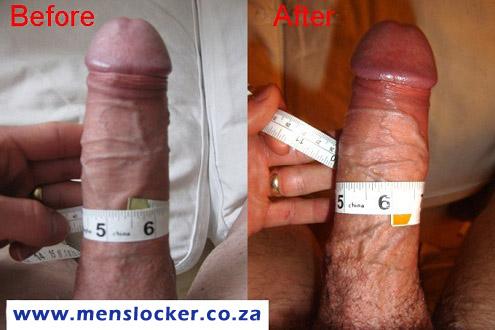 erect male penis