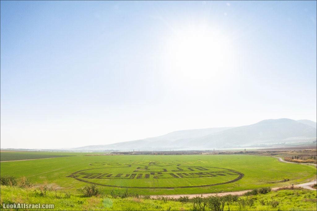Сельскохозяйственные художества