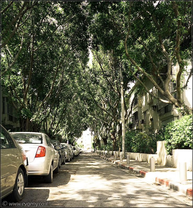 Покинутый город Тель Авив