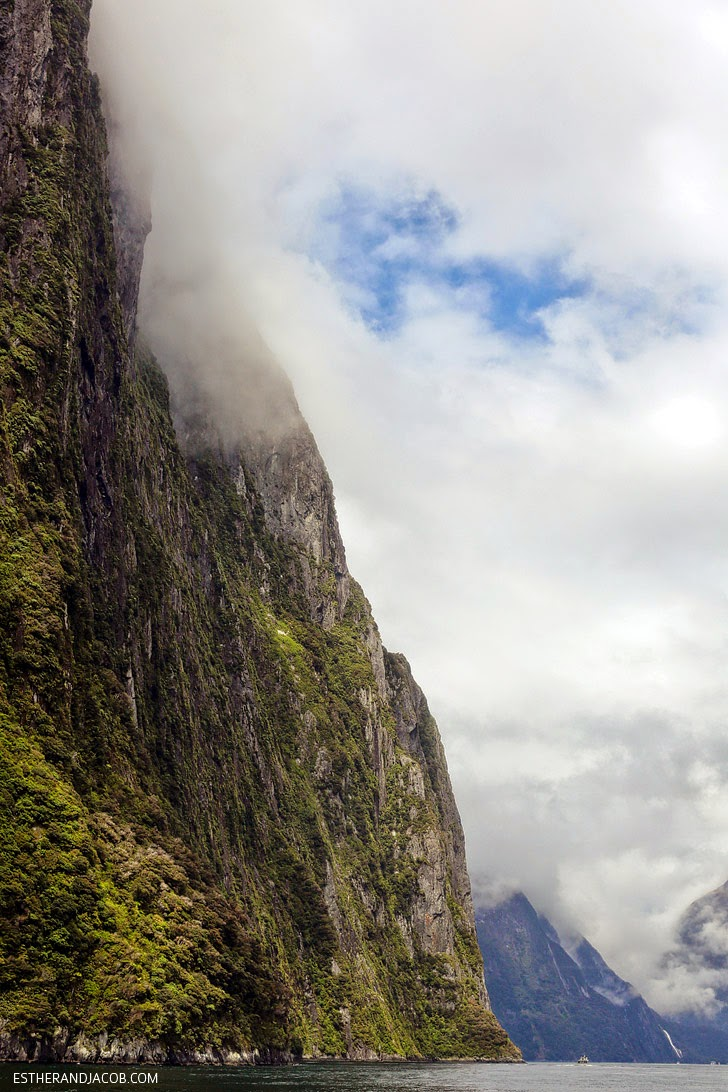 Views of Milford Sound   Day 5 New Zealand Sweet as South Contiki Tour   A Guide to South Island