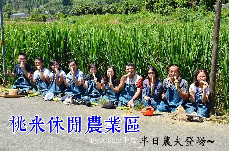 桃米休閒農業區