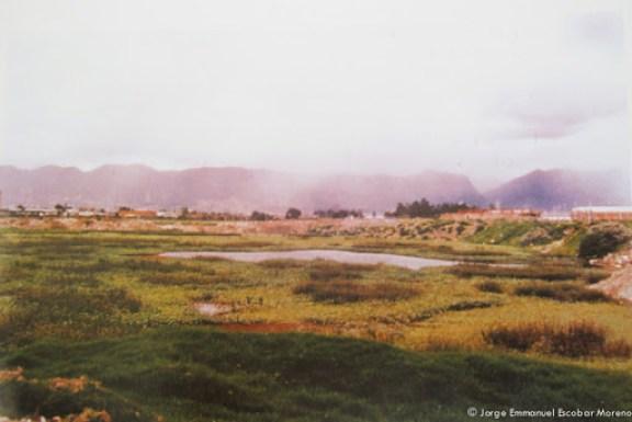 Humedal de la Zona Industrial en Bogotá
