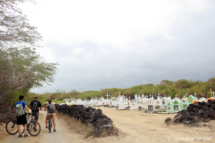 Bike riding in the Wetlands Isabela Island Galapagos in search of the blue footed boobies.