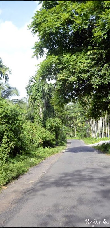 road to radhanagar beach